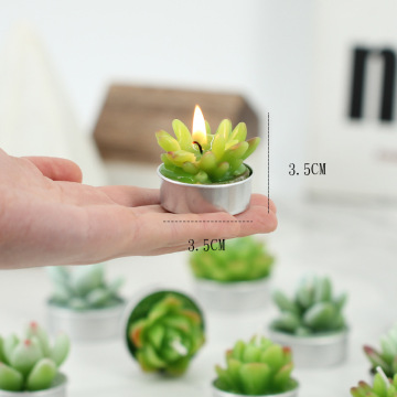 Decoration Simulation Green Desert Succulent Candles