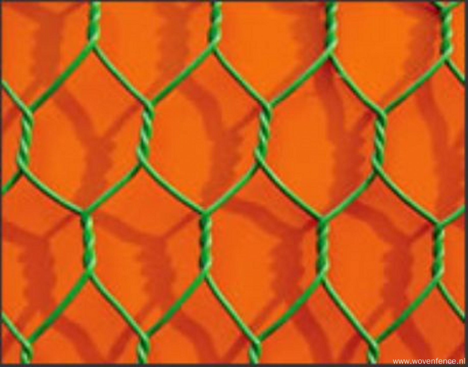 Hexagonal wire mesh with reinforce wire