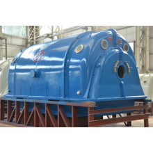 High Quality Industrial Factory for Biomass Generation Domestic Steam Turbine Generator QNP export to Palestine Importers