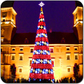 Optical Fiber Giant LED Tree Outdoor Holiday Light