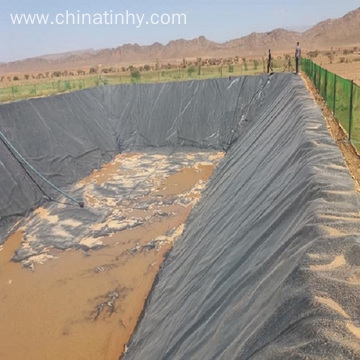 Geomembrane with primary and secondary containment