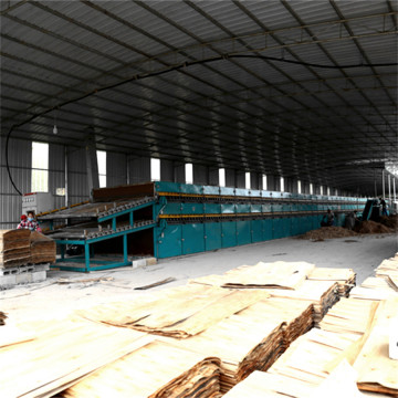 Alibaba Roller Veneer Drying Machine for Sale