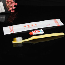 degradable wheat straw toothbrush toothpaste set