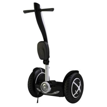 Fashion Mini Electric Chariot Seg Way