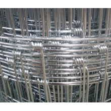 Galvanized Grassland Farm Fence / Field Cattle Fence