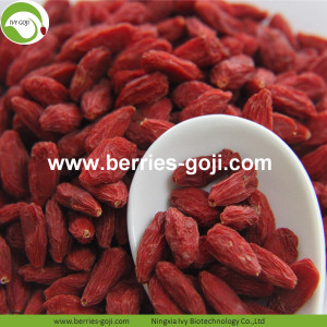 Factory Supply Super Food Dried Goji Fruit