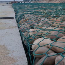 Best Price for Gabion Basket Mattress Grenn Plastic Hexagonal Gabion Wire Mesh export to Sudan Manufacturer