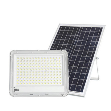 100W Decorative Outdoor Flood Light