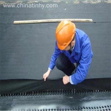 Leading HDPE Geomembrane Liner