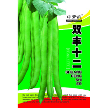 Factory directly for Beans Seeds,Long Bean Seeds Manufacturers and Suppliers in China beans seeds in vegetable seeds for sale export to Tajikistan Manufacturers
