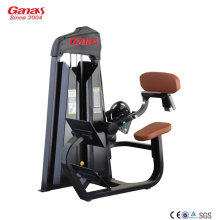 Big discounting for GYM Equipment Gym Commercial Fitness Equipment Back Extension export to Spain Factories