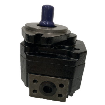 group 3 Cast Iron Gear Pump