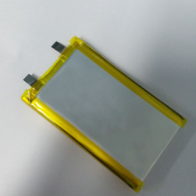 4000mah Large capacity polymer battery Pet tracker