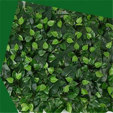 Best Quality for Artificial Boxwood,Artificial Hedge manufactuer from China Artificial epipremnum aureum wall supply to Russian Federation Wholesale