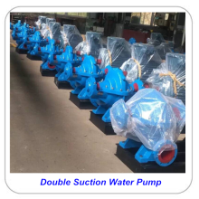 Big Discount for Portable Water Pump Horizontal Double Suction Centrifugal Water Pump supply to French Guiana Factories