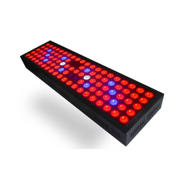 Spektrum Lengkap Daya 300W LED Grow Light