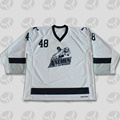 Promotional European Custom team hockey jersey shirts