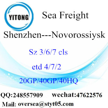 Shenzhen Port Sea Freight Shipping To Novorossiysk