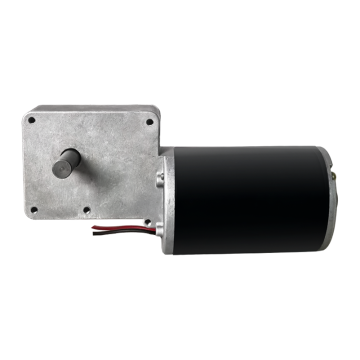Maintex 12V DC Electric Worm Gear Motor