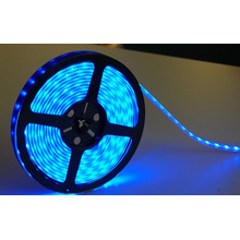 Wholesale Price for Factory of Led Strip Behind Tv, Led Office Lighting, Garage Led Strip from China LED Strip 5050 RGB IP68 SMD5050 LED Strip Light export to Portugal Factories