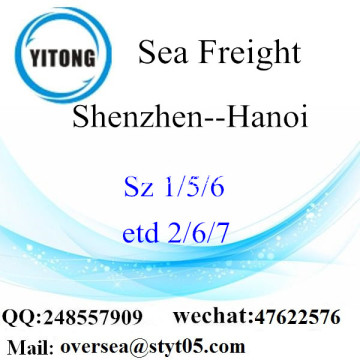 Shenzhen Port LCL Consolidation To Hanoi