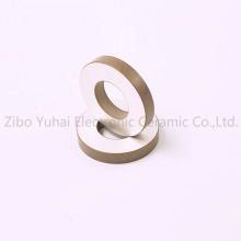 Piezo Ring Ultrasonic Cleaning Transducer 40KHz