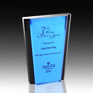 cheap acrylic appreciation corporate awards plaques