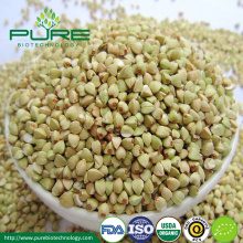 New Crop Organic dried buckwheat