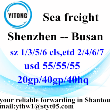 Shenzhen Global Ocean Freight Shipping Service to Busan