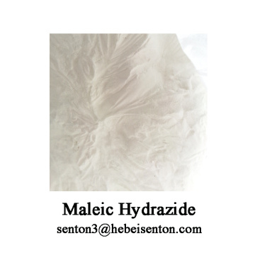 OEM/ODM Supplier for Plant Growth Hormones, Plant Hormones, Growth Regulators Manufacturer in China Maleic hydrazid plant growth regulator export to Russian Federation Supplier