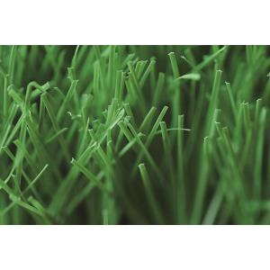 MT-Graceful Commercial Artificial Grass