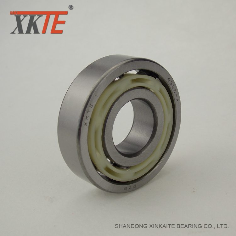 Conveyor Idler Accessory Nylon Bearing 6305 TNG C3