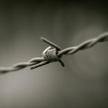 barbed wire different types