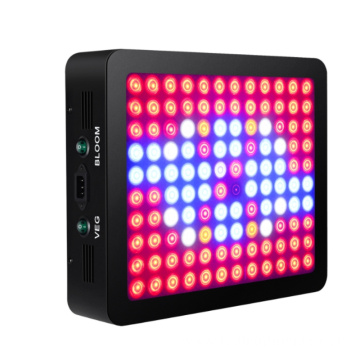 1200W LED Grow Light for Greenhouse Plants Factory