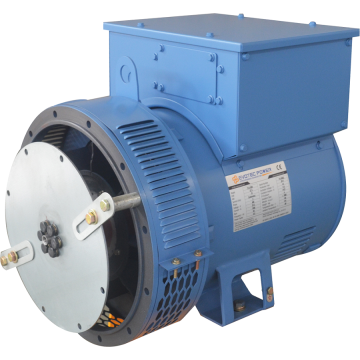 Brushless Industrial Low Voltage Generator