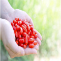 FDA Certified Hot sale chinese organic wolfberry