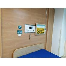 Mural Type Bed Head Unit for Sale
