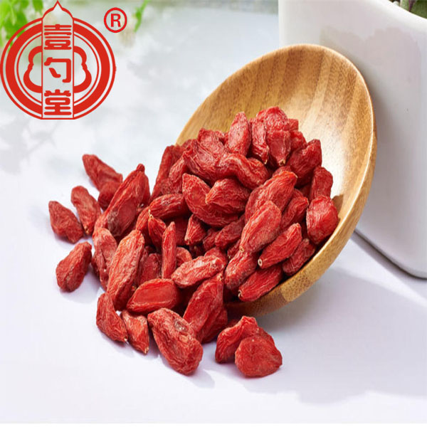 Red Fruit Dried Goji Berries