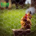 Galvanized chicken wire mesh fence