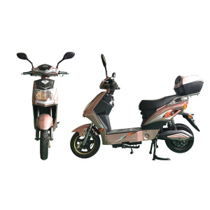 Battery take electric bike 48V20A
