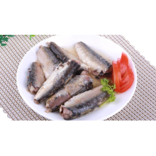 Canned Sardine Fish in Vegetable Oil