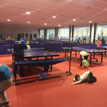 Supply for Indoor Tennis Sports Flooring Ping Pong court mat supply to Russian Federation Factories