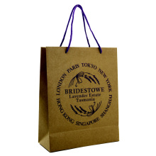 Supply for Paper Shopping Bags Cheap Kraft Paper Bag  with Handle export to Netherlands Supplier