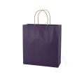 Colored Paper Bags with Handles