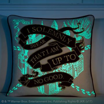 Map's light up pillow cover