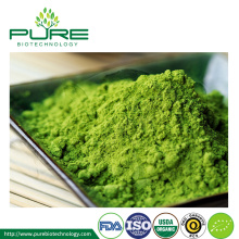 Organic Certified Matcha Powder