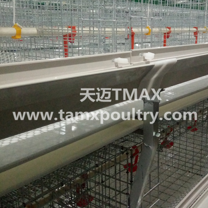 H Type Poultry Cages