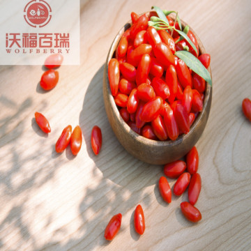Organic Goji berries could enhance sexual well-being