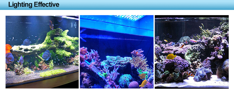 Coral LED Aquarium Lighting