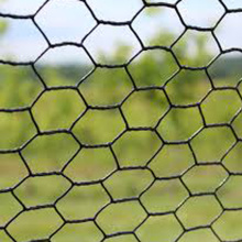 Top Quality Better Price Hexagonal Rabbit Netting